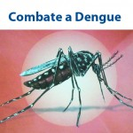 Roche no Combate a Dengue
