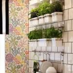 Aprenda a plantar uma horta medicinal em apartamento
