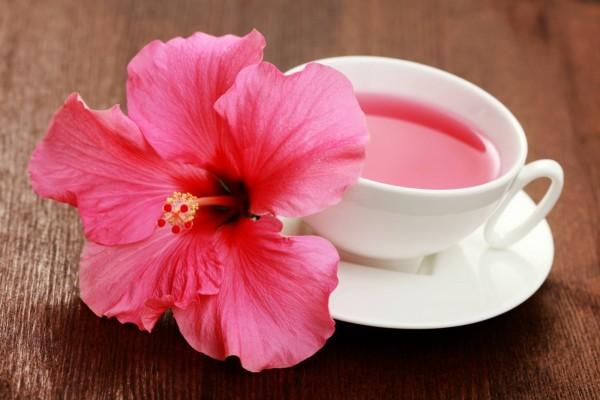Como fazer Chá de hibisco