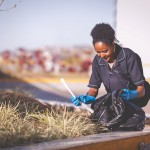 Jardinagem e limpeza em bh